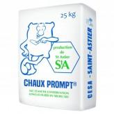 ASTIER Liant CHAUX & PROMPT 25KG