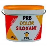 COLOR SILOXANE 20KG