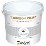 WEBER BADIGEON CHAUX 10KG (WEBER.PRODEXOR K)
