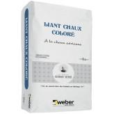 WEBER LIANT CHAUX COLORÉ 15KG (WEBER.SPH K)