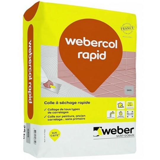 WEBERCOL RAPID - GRIS - 25KG (WEBER.COL RAPID)