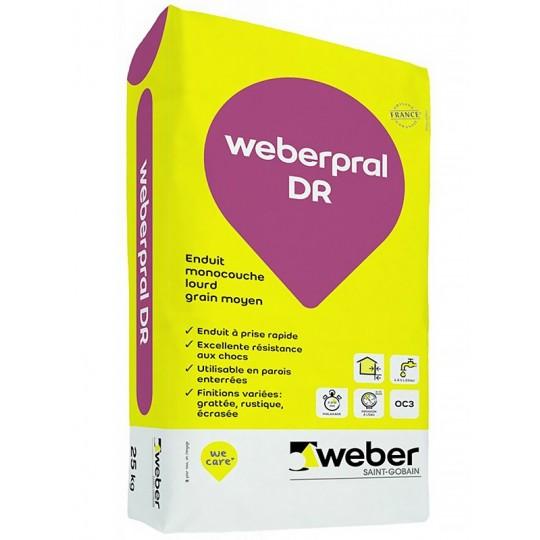 WEBERPRAL DR 25KG (WEBER.PRAL DR)